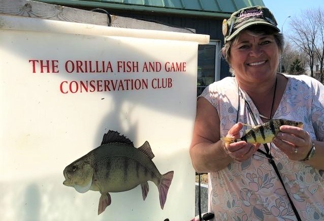 Debbie McGrady, of Midland, caught the first tagged perch on day 18 of this year's Orillia Perch Festival. The tag was worth $500. Contributed photo