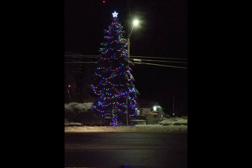 The tree at the corner of County Road 169 and Muskoka Street was lit up last year for the inaugural Washago Village Lights event. Supplied photo