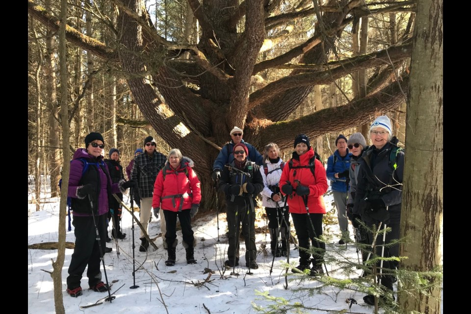 It was a great weekend to be outside. Members of the Ganaraska Hiking Club are shown at Willow Creek in Midhurst. Contributed photo