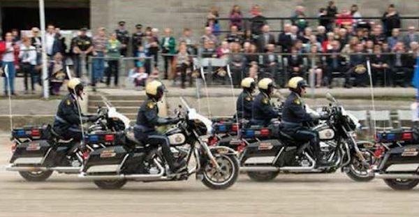 2019-02-11 Golden Helmets OPP