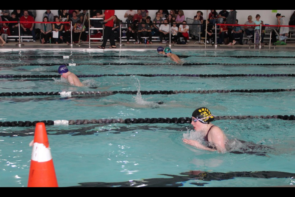 Olivia LePage competes in a breaststroke race at the recent Collingwood Clippers Development Meet. Contributed photo