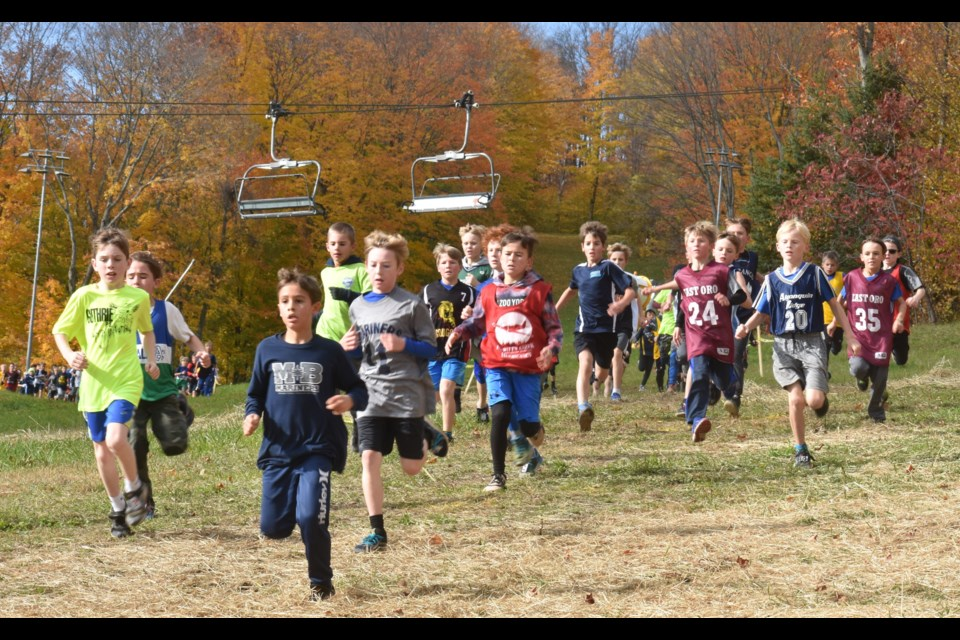 A group of athletes competing in the Grade 4 division sprint down a hill at Wednesday's Simcoe County Elementary School Cross Country Running Championship at Mount St. Louis. Dave Dawson/OrilliaMatters