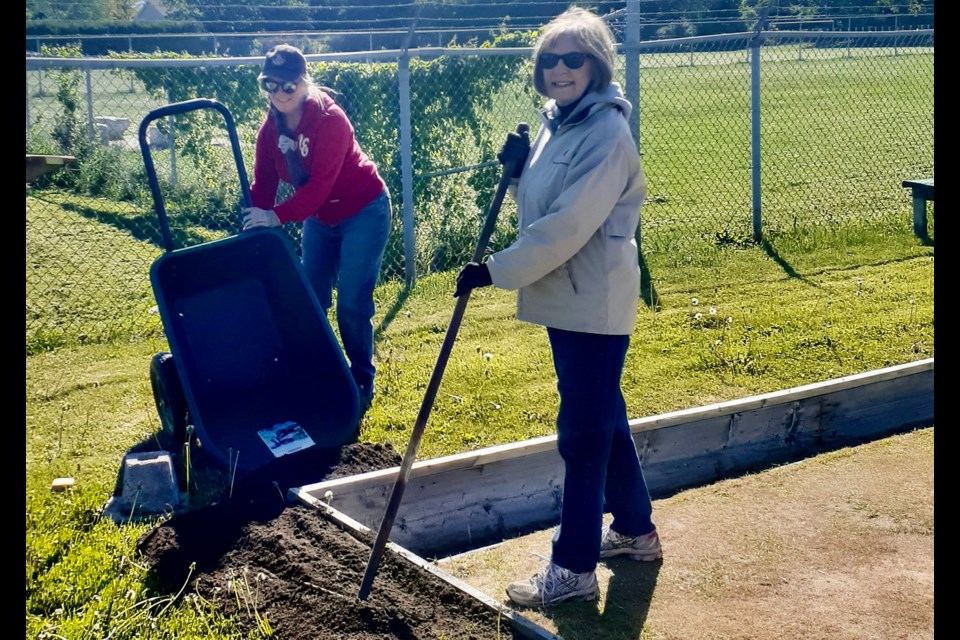 Club volunteers have been working to level the outside grass with the bowling green backboards in preparation for the beginning of a new season.