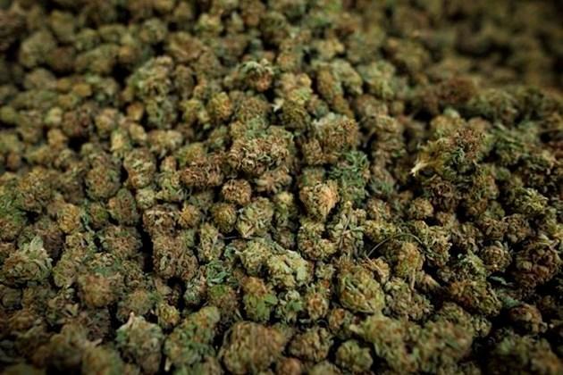 2018-10-06 cannabis