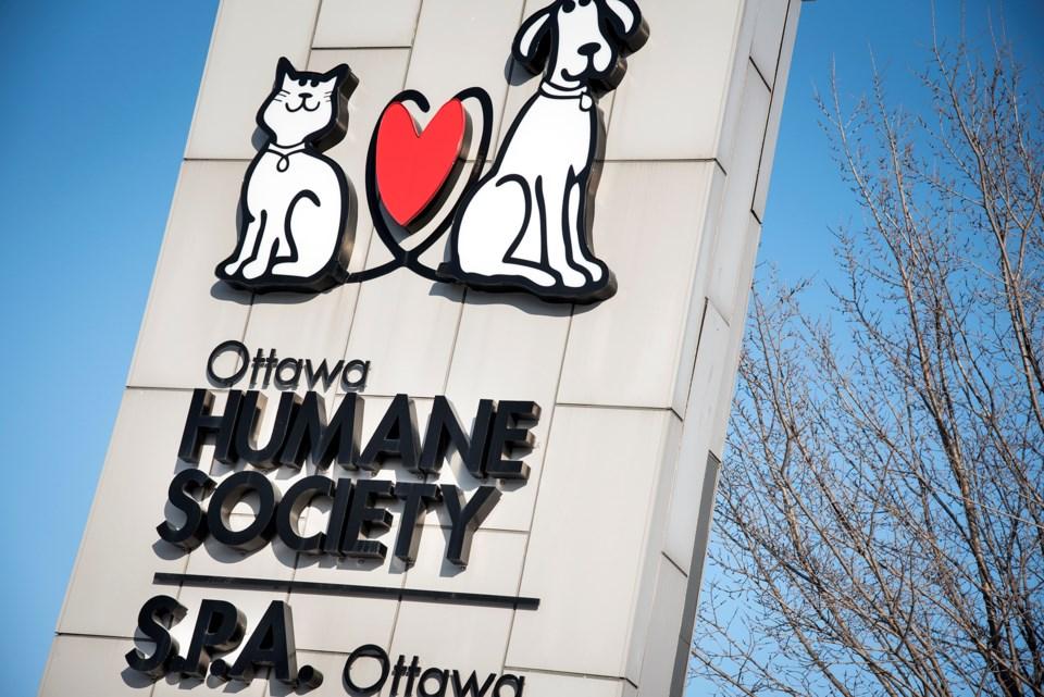 Ottawa Humane Society DD1