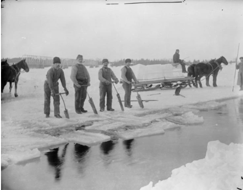 Ice harvesting, Ottawa River. Photo/ Topley Studios, Library and Archives Canada, R639-0-5-E.