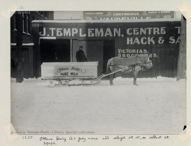 ottawa-dairy-1910-timmisreginald-s.-995-1-9-32a