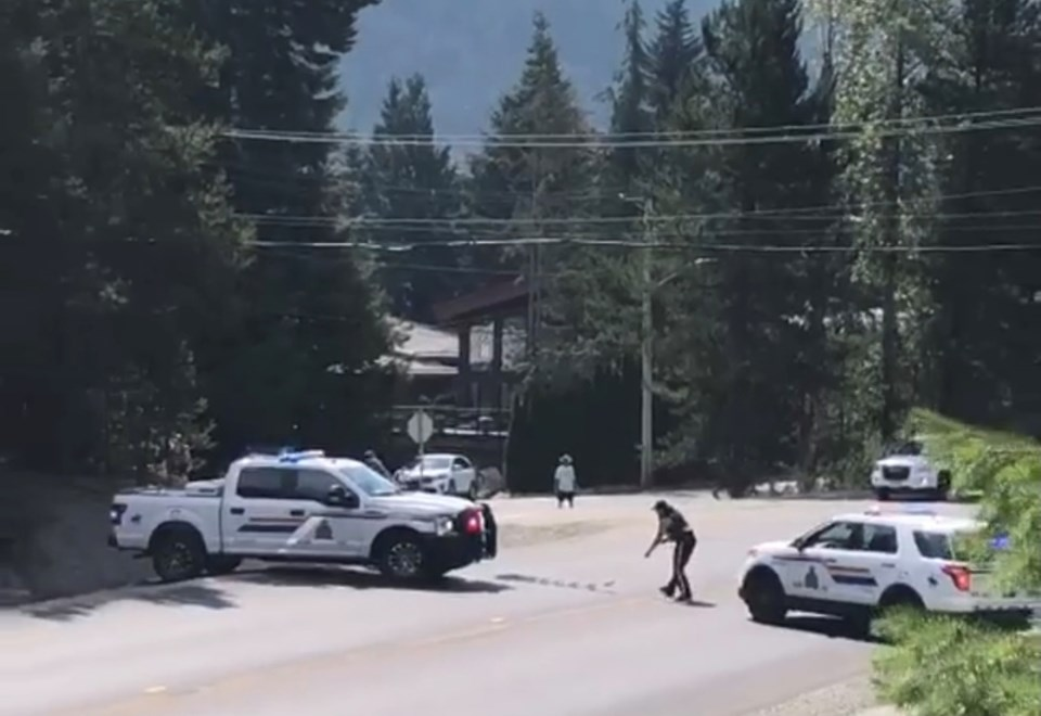 Whistler RCMP spike trap set for speeding Burnaby driver