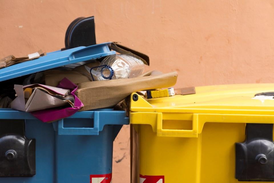 blue bin recycling
