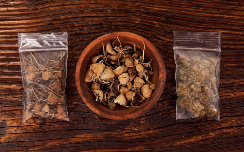 mushrooms080820