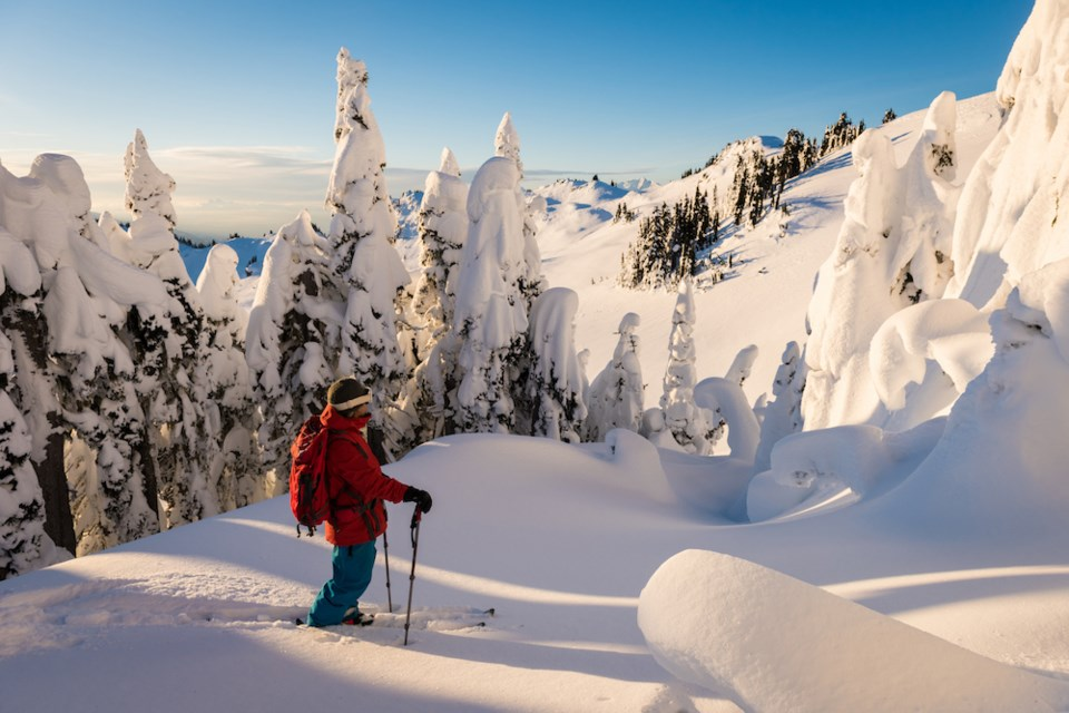 whistler britich columbia backcountry skiing avalanche awareness