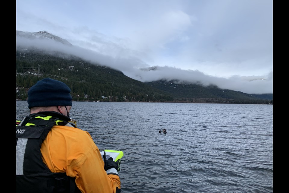 A Whistler firefighter tests out the AquaEye on a diver in a simulated rescue last week.  PHOTO BY BRANDON BARRETT