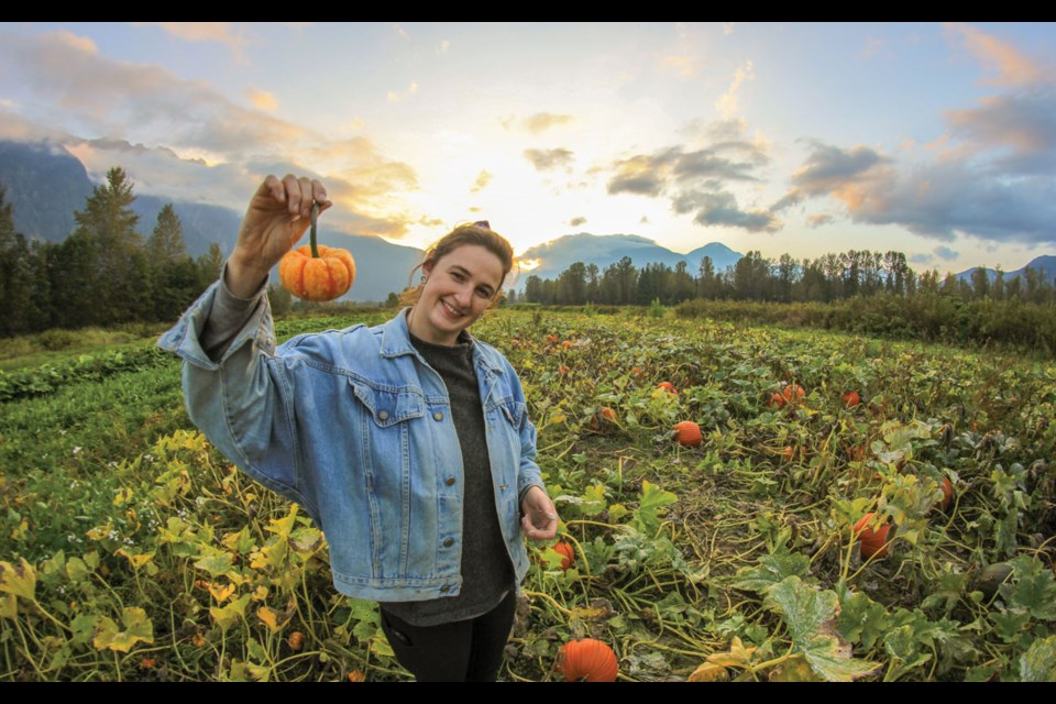 PUMPKIN PICKING Pumpkin season is in full swing at Pemberton's North Arm Farm, with its patch stocked with pumpkins of all sizes—just in time for spooky season. Photo by James Court Photography