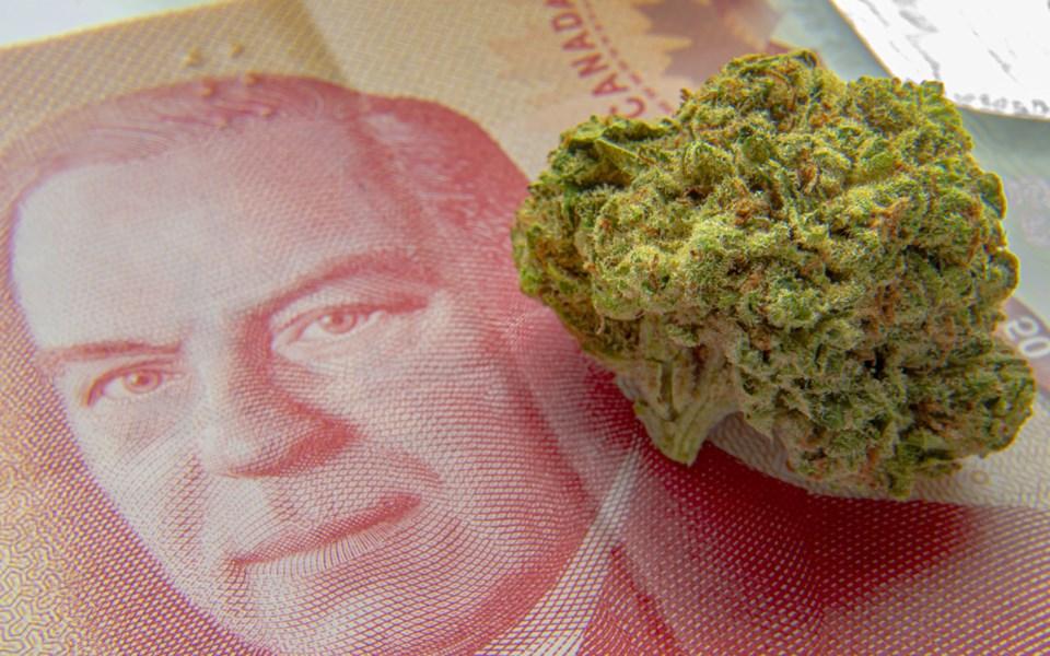 Pemberton-Council-Cannabis-Fees-030221