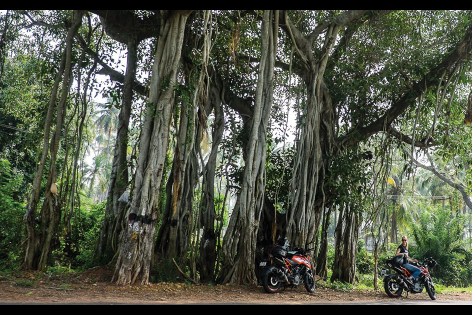South India road trip—The East Coast Highway by motorcycle