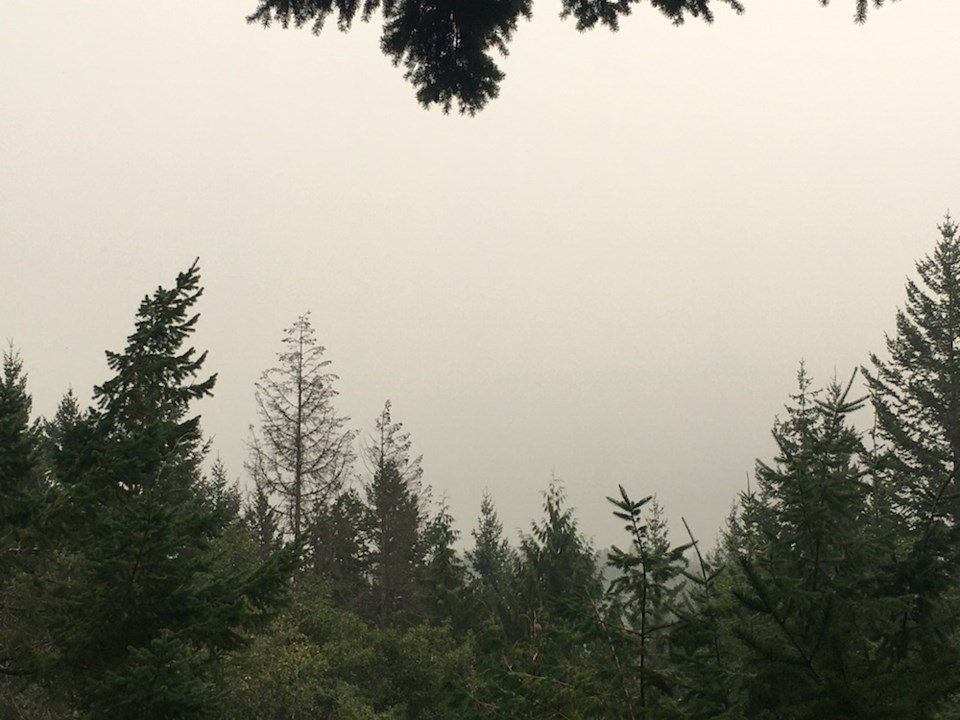 smoky skies whistler alpine meadows by clare