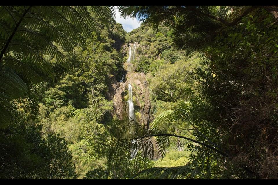 Kitekite Falls near the east coast of Auckland, New Zealand. Shutterstock.com