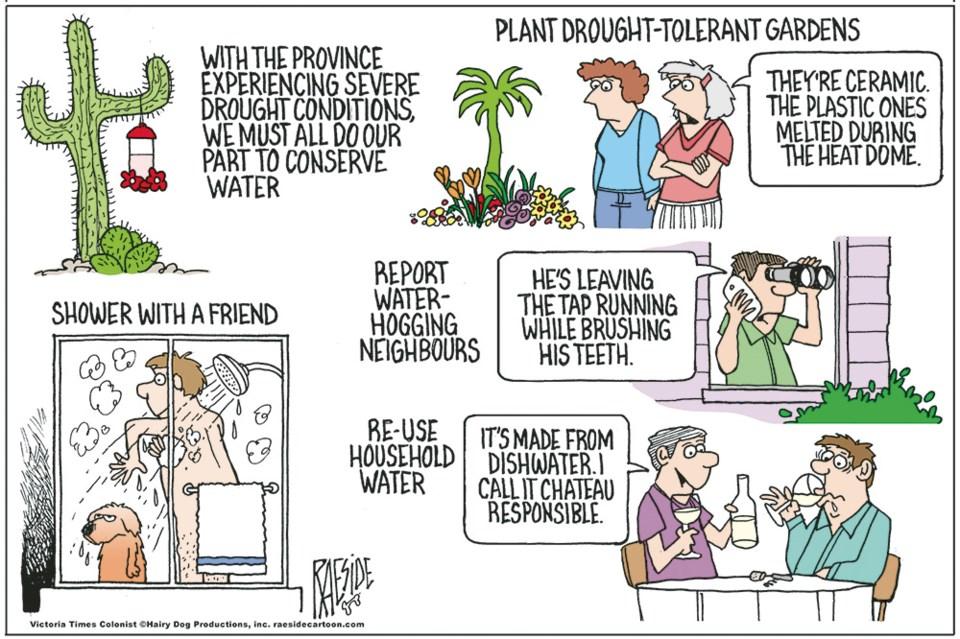 2641_cartoon_raeside_drought