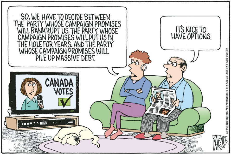 2645_cartoon_election_options