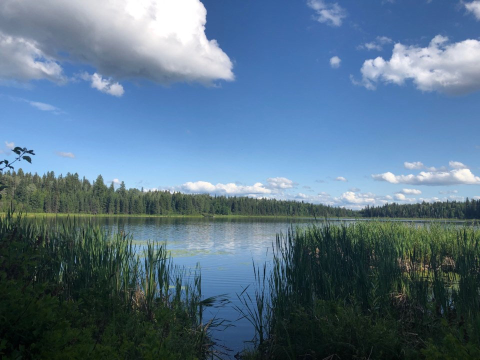 Ferguson Lake Park