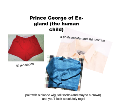 Prince George the person halloween costume
