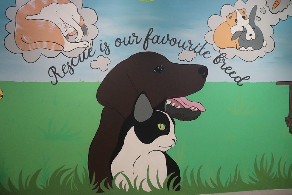 One of the new murals painted by Katelyn Steeves. Take a sneak peak at some of the changes. (via Hanna Petersen, PrinceGeorgeMatters)