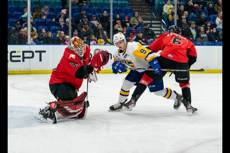Prince George Cougars' Taylor Gauthier (#35) jumps to make the save while on the road in Saskatoon (via Saskatoon Blades)