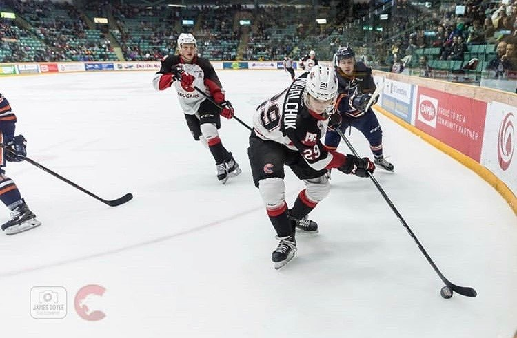 Vladislav Mikhalchuk (#29) carries the puck in the corner of the CN Centre during the last game of the 2018-19 season against Kamloops (via Prince George Cougars/James Doyle Photography)