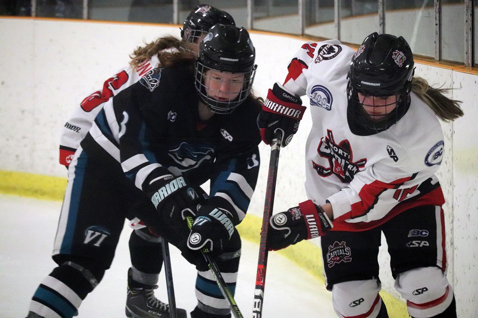 Northern Capitals' Nancy Moore (#12) battles for the loose puck along the boards against the Vancouver Island Seals (via Kyle Balzer)