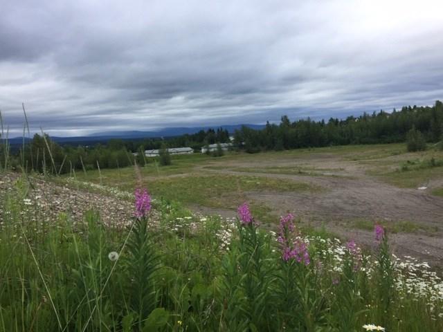 Rosmarie Vonah - June 27, 2020 lavender flowers