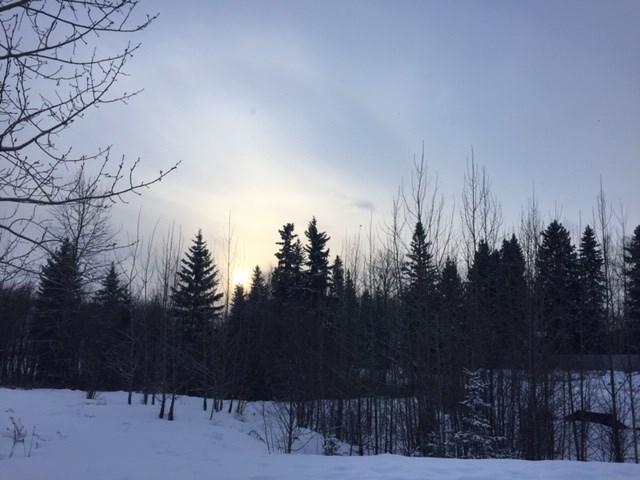 Rosmarie Vonah - Jan. 26, 2021 sun through cloudy skies snow