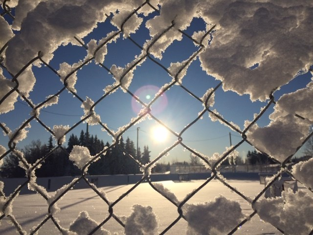 Snow-covered fences among a winter wonderland in Prince George. / Rosmarie Vonah