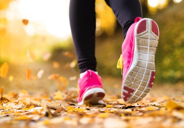 Fall running stock
