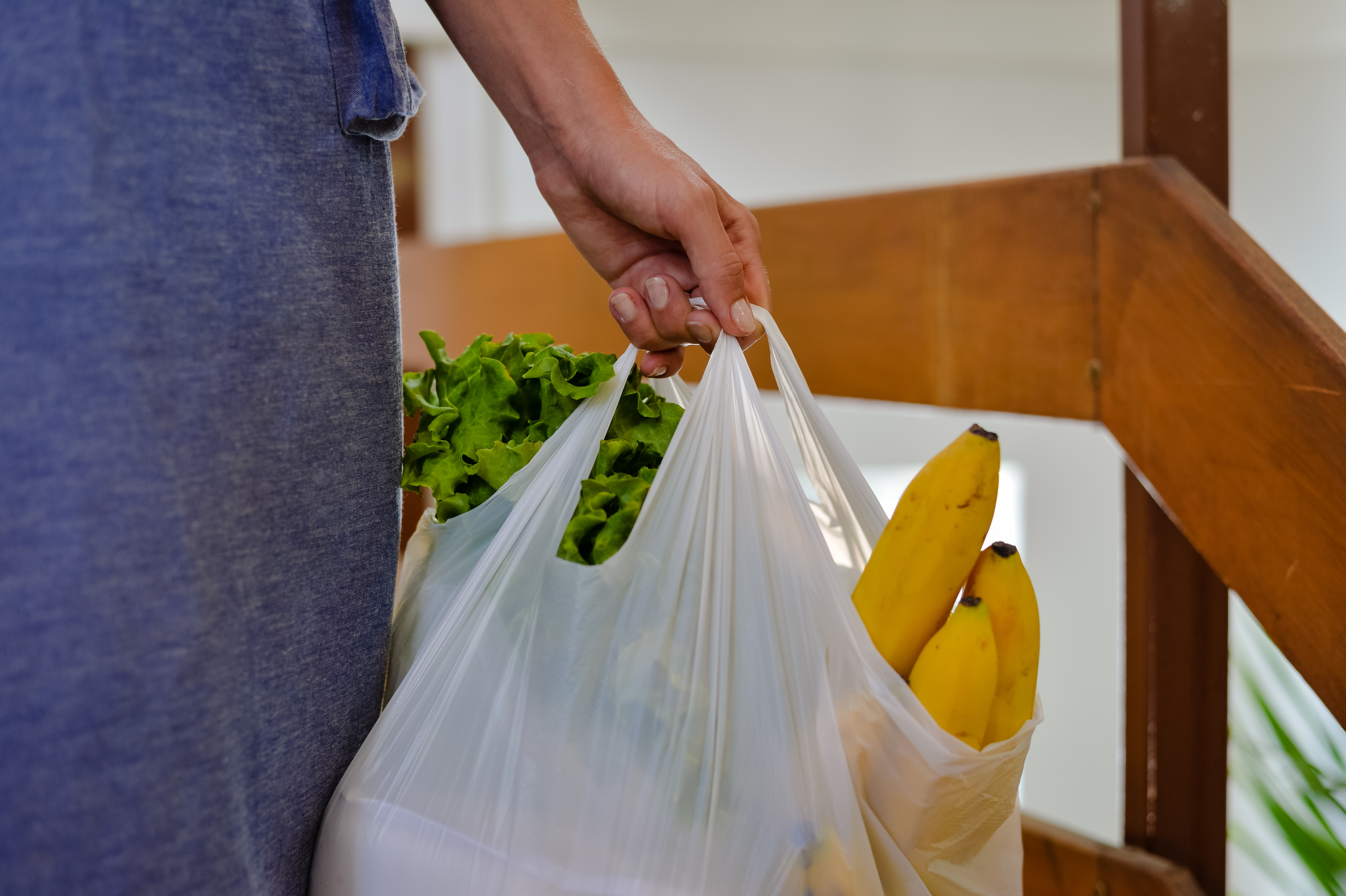 Prince George council to discuss impacts of potential single-use plastic bag ban