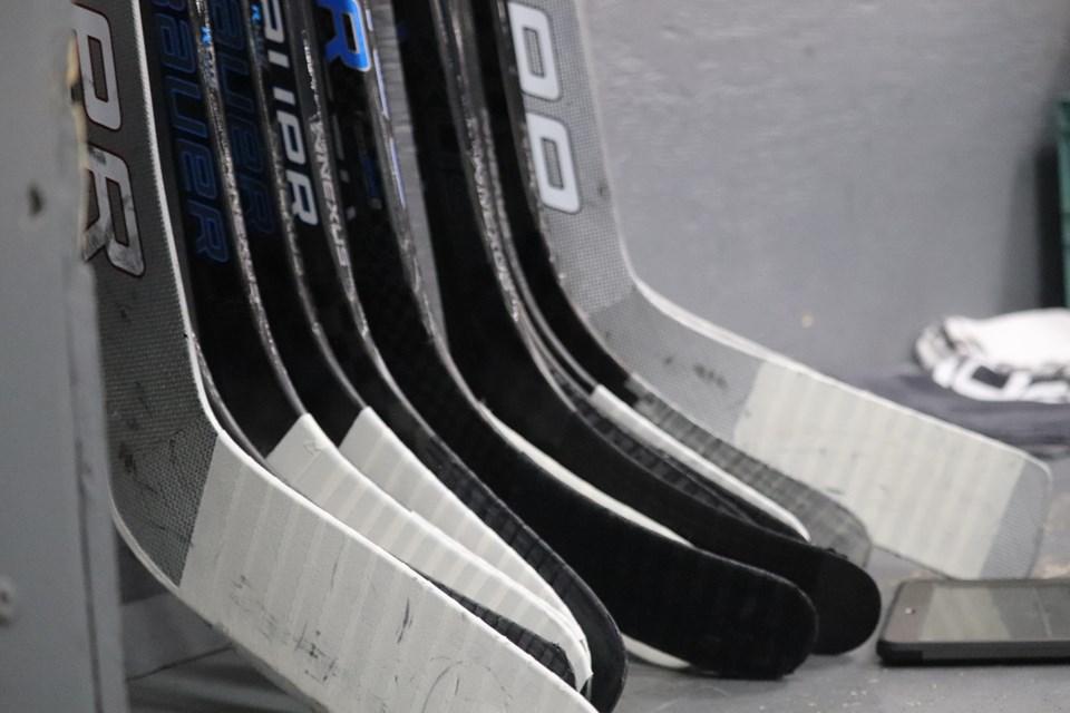 Hockey stock