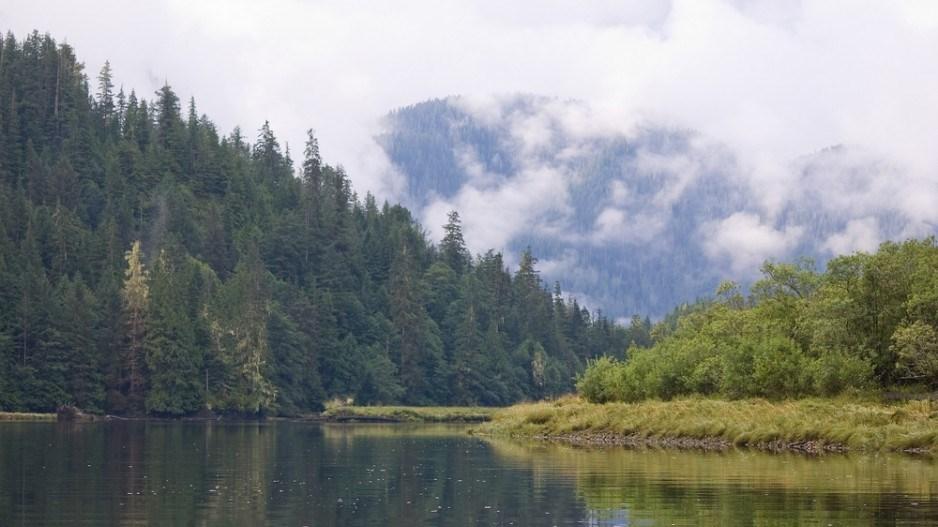 smith-inlet-great-bear-rainforest