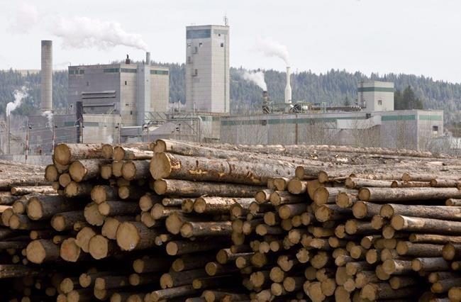 lumber (West Fraser)