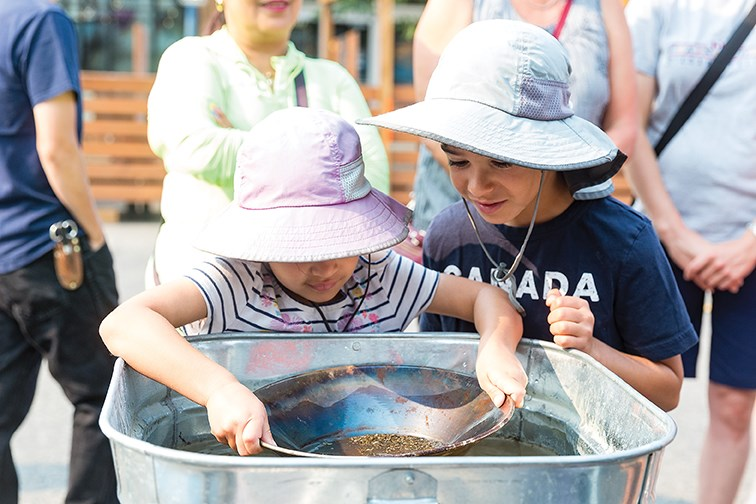 Four-year-old Teagan Scherz, left, tries her hand at goldpanning with seven-year-old Finley Scherz, right, looking on on Saturday morning at the Barkerville booth at the Prince George Farmers Market.