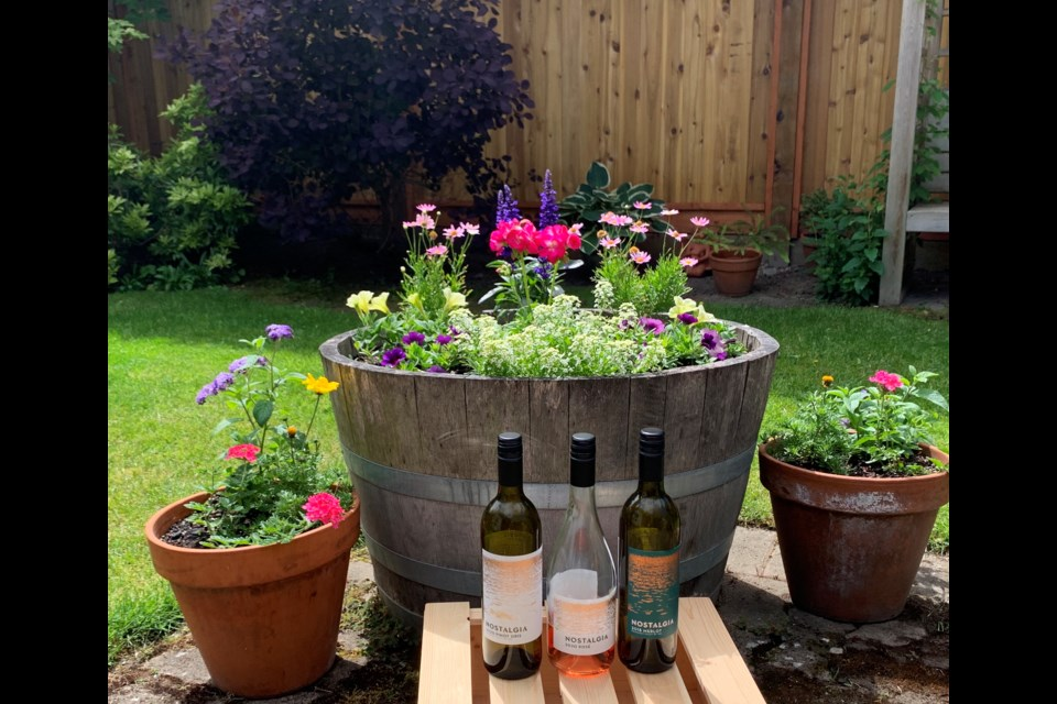 Memorable Pinot Gris, Rosé, and Merlot from Nostalgia Wines.