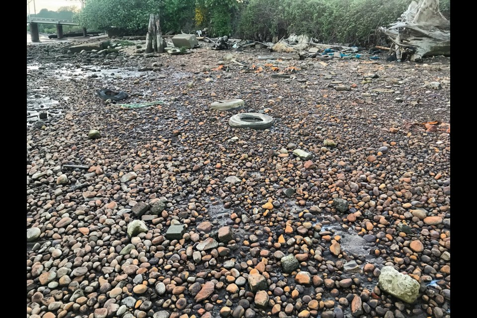 Environmental advocates are calling for a revival of the Fraser River Estuary Management Porgram. Pictured: the landscape of the old Richmond dumpsite is stained from rusting metals and decaying garbage.
