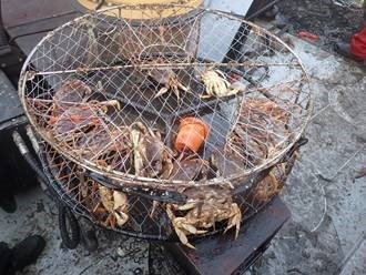 Government seeks to seize home of man guilty of illegal crab fishing off North Vancouver