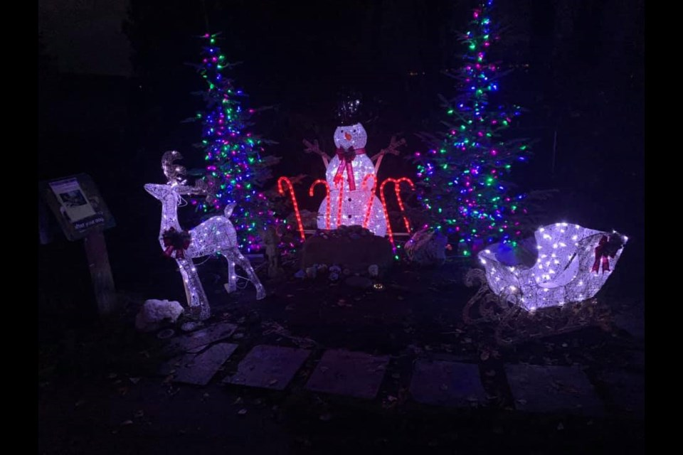 The Dog Gone Rock memorial has been decorated with Christmas lights to celebrate the holidays. Photo: Karina Reid