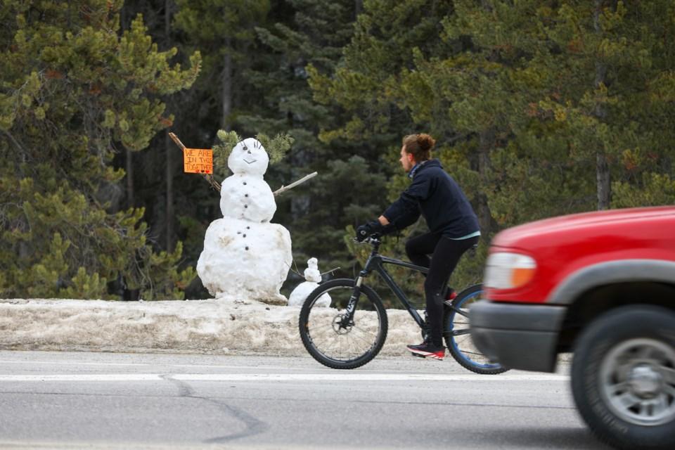 20200327 Snowman COVID 19 0085