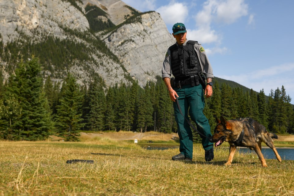 Parks Canada's new dog handler Logan Bennett runs through a set of commands with his professional service dog Leroy on Sept. 4. EVAN BUHLER RMO PHOTO