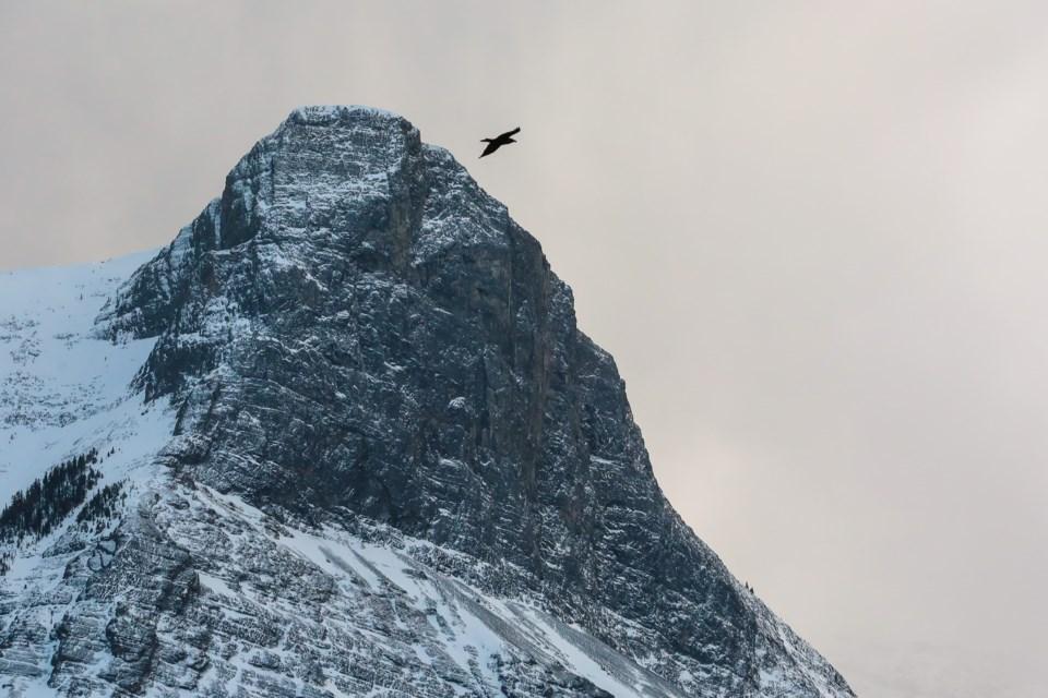 20210319 Mountains 0015