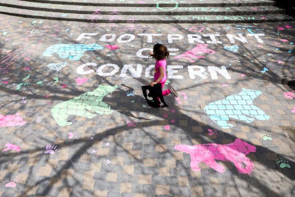 Pipper MacNeill runs with a stencil across the sidewalk art as part of the Footprints of Concern art installation in front of the Canmore Civic Centre protesting the Three Sister Mountain Village development on Saturday (May 22). EVAN BUHLER RMO PHOTO