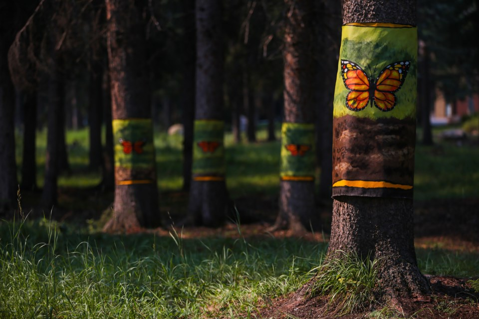 """Artist Morcos Molina's hand painted canvas wraps """"The Floating Forest"""" is part of the Art in Nature Walk, located along the Bow River Trail in Banff on Tuesday (July 27). EVAN BUHLER RMO PHOTO"""