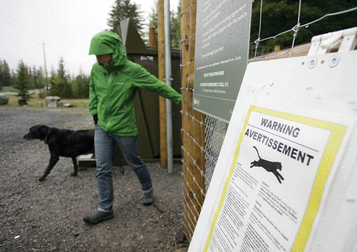 A Cougar warning alerts users of the Banff off-leash dog area of a cougar in the area.