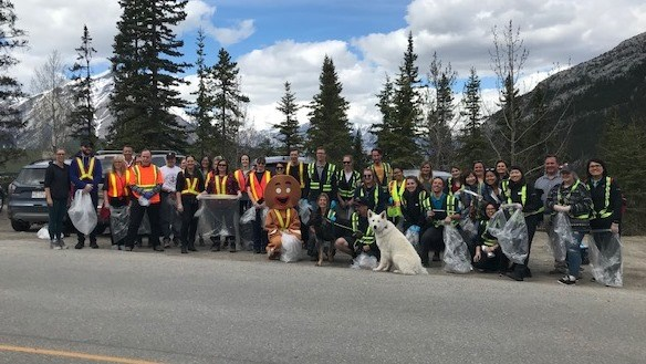 Mountain Ave Cleanup