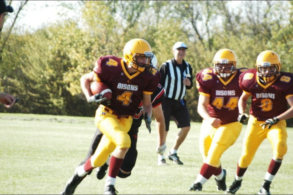 LCBIbisonsfball